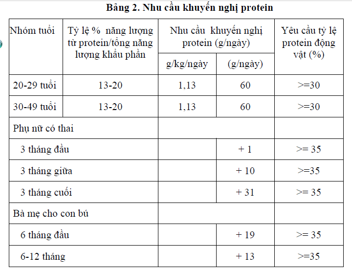 Nhu cầu khuyến nghị Protein