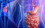 Bệnh hội chứng ruột kích thích, những điều cần biết